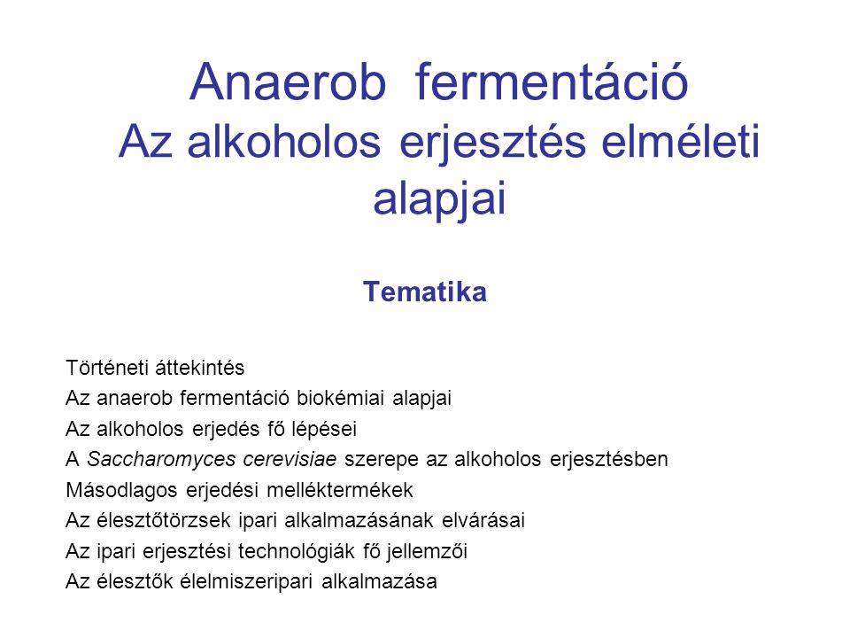 Anaerob fermentáció Az alkoholos erjesztés elméleti alapjai Tematika Történeti áttekintés Az anaerob fermentáció biokémiai alapjai Az alkoholos erjedé