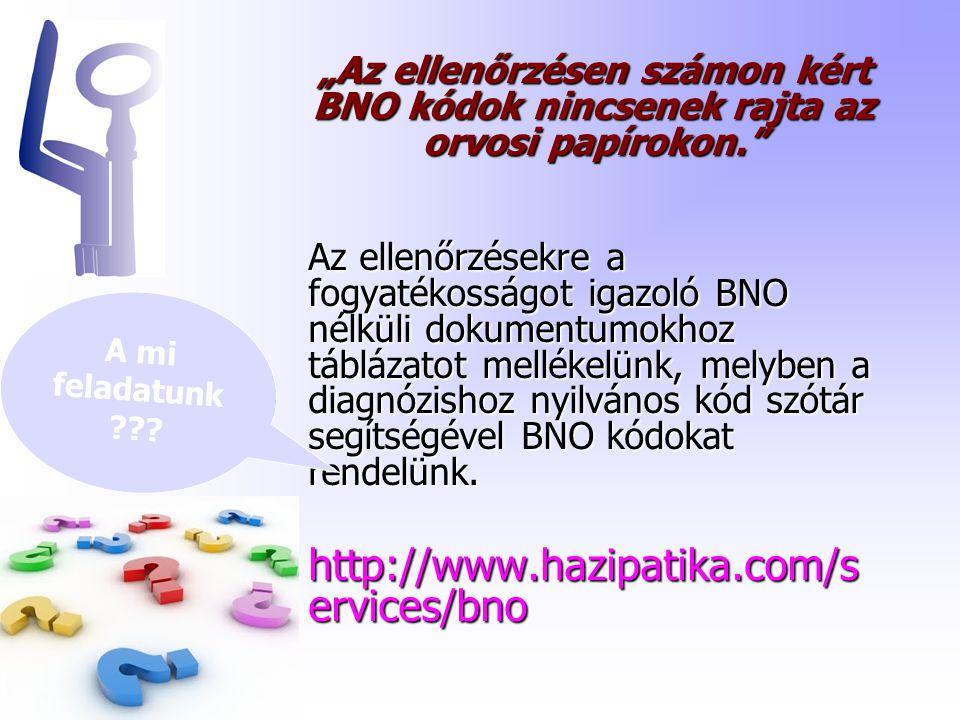"""""""Az ellenőrzésen számon kért BNO kódok nincsenek rajta az orvosi papírokon. Az ellenőrzésekre a fogyatékosságot igazoló BNO nélküli dokumentumokhoz táblázatot mellékelünk, melyben a diagnózishoz nyilvános kód szótár segítségével BNO kódokat rendelünk."""