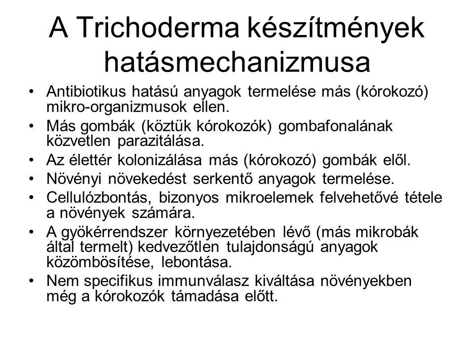 A Trichoderma készítmények hatásmechanizmusa Antibiotikus hatású anyagok termelése más (kórokozó) mikro-organizmusok ellen. Más gombák (köztük kórokoz