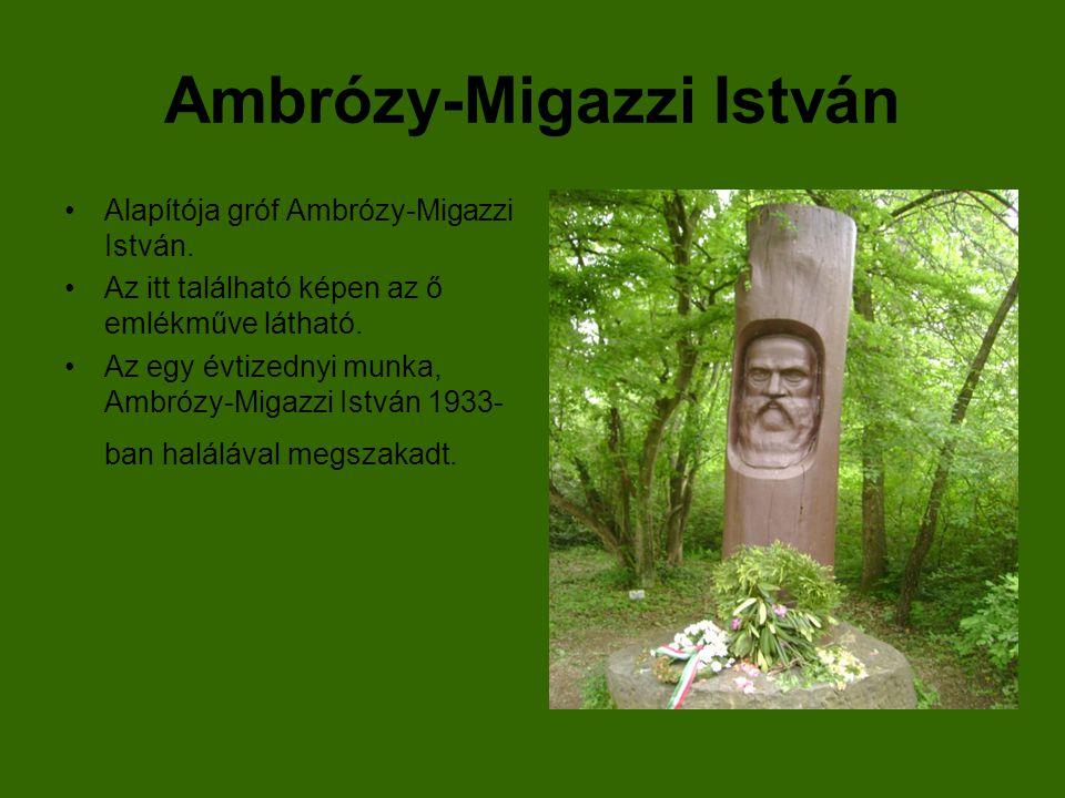 Ambrózy-Migazzi István Alapítója gróf Ambrózy-Migazzi István. Az itt található képen az ő emlékműve látható. Az egy évtizednyi munka, Ambrózy-Migazzi