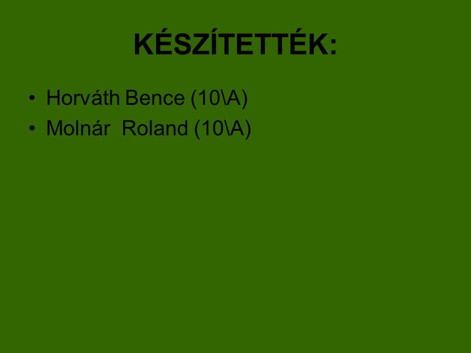 KÉSZÍTETTÉK: Horváth Bence (10\A) Molnár Roland (10\A)