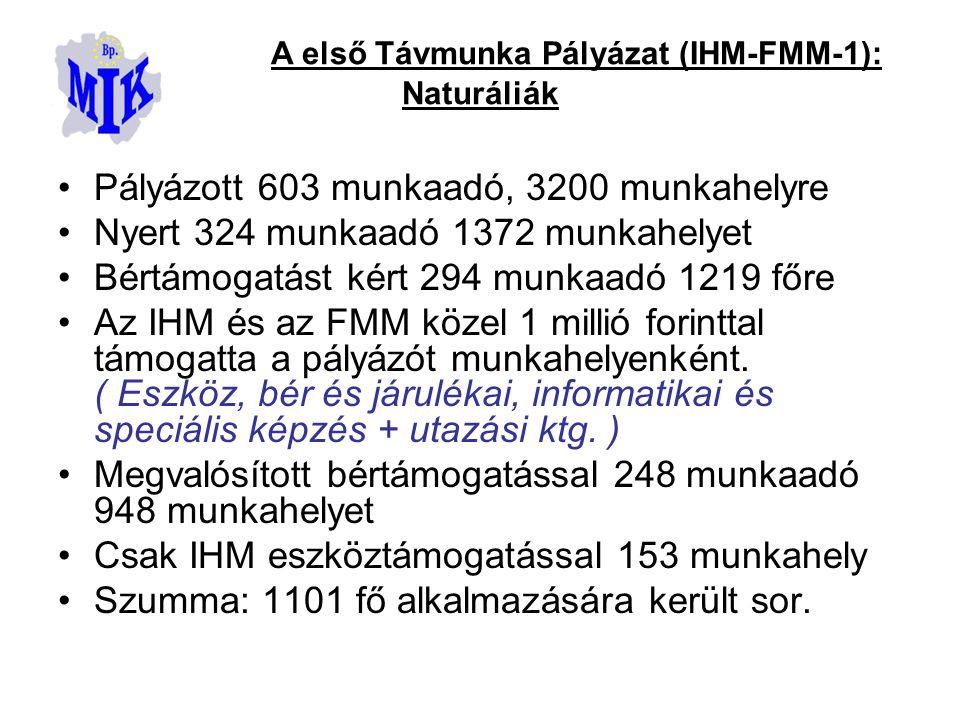 Pályázott 603 munkaadó, 3200 munkahelyre Nyert 324 munkaadó 1372 munkahelyet Bértámogatást kért 294 munkaadó 1219 főre Az IHM és az FMM közel 1 millió forinttal támogatta a pályázót munkahelyenként.