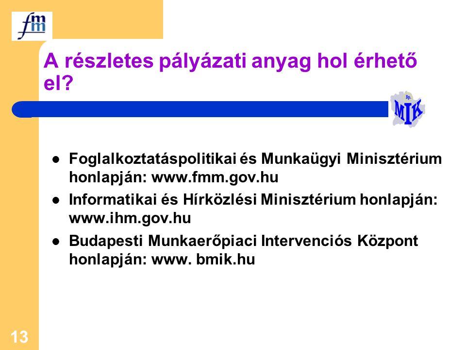 13 A részletes pályázati anyag hol érhető el? Foglalkoztatáspolitikai és Munkaügyi Minisztérium honlapján: www.fmm.gov.hu Informatikai és Hírközlési M