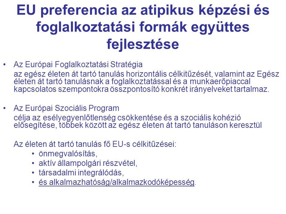 EU preferencia az atipikus képzési és foglalkoztatási formák együttes fejlesztése Az Európai Foglalkoztatási Stratégia az egész életen át tartó tanulás horizontális célkitűzését, valamint az Egész életen át tartó tanulásnak a foglalkoztatással és a munkaerőpiaccal kapcsolatos szempontokra összpontosító konkrét irányelveket tartalmaz.