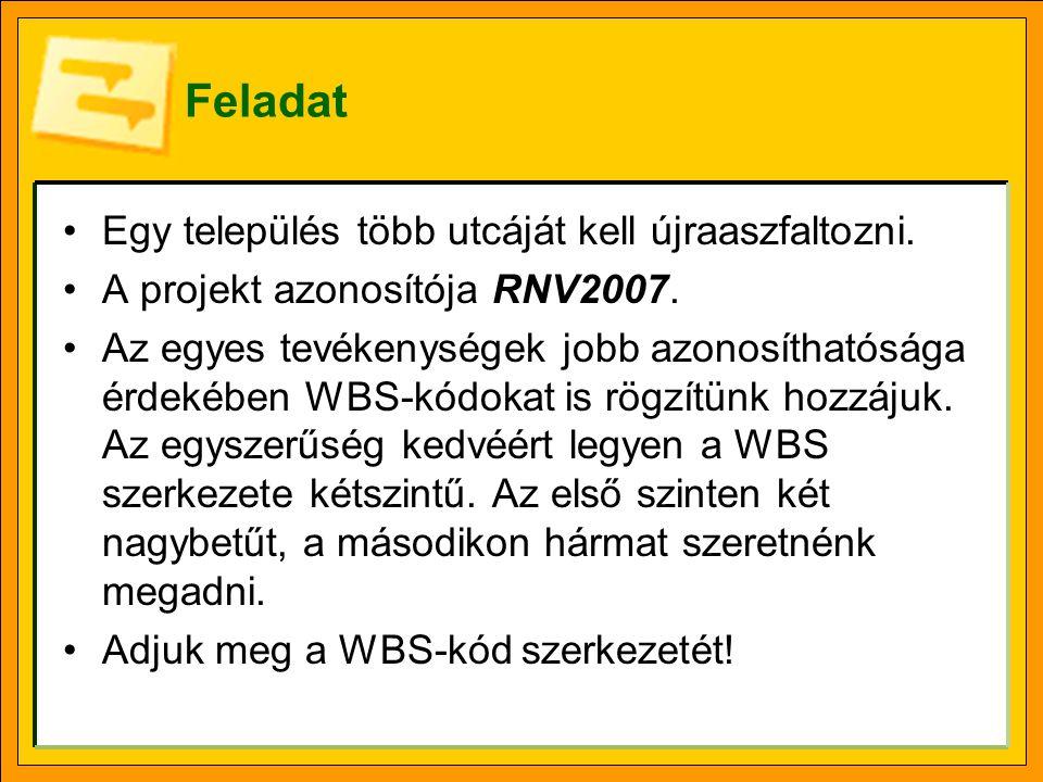 Feladat Egy település több utcáját kell újraaszfaltozni. A projekt azonosítója RNV2007. Az egyes tevékenységek jobb azonosíthatósága érdekében WBS-kód