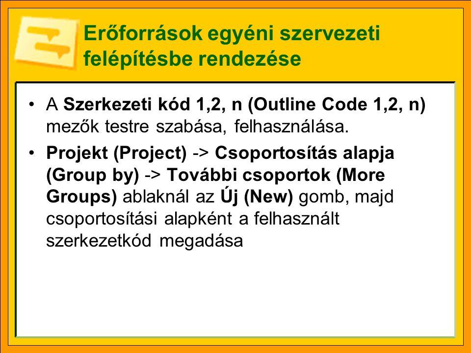 Erőforrások egyéni szervezeti felépítésbe rendezése A Szerkezeti kód 1,2, n (Outline Code 1,2, n) mezők testre szabása, felhasználása. Projekt (Projec