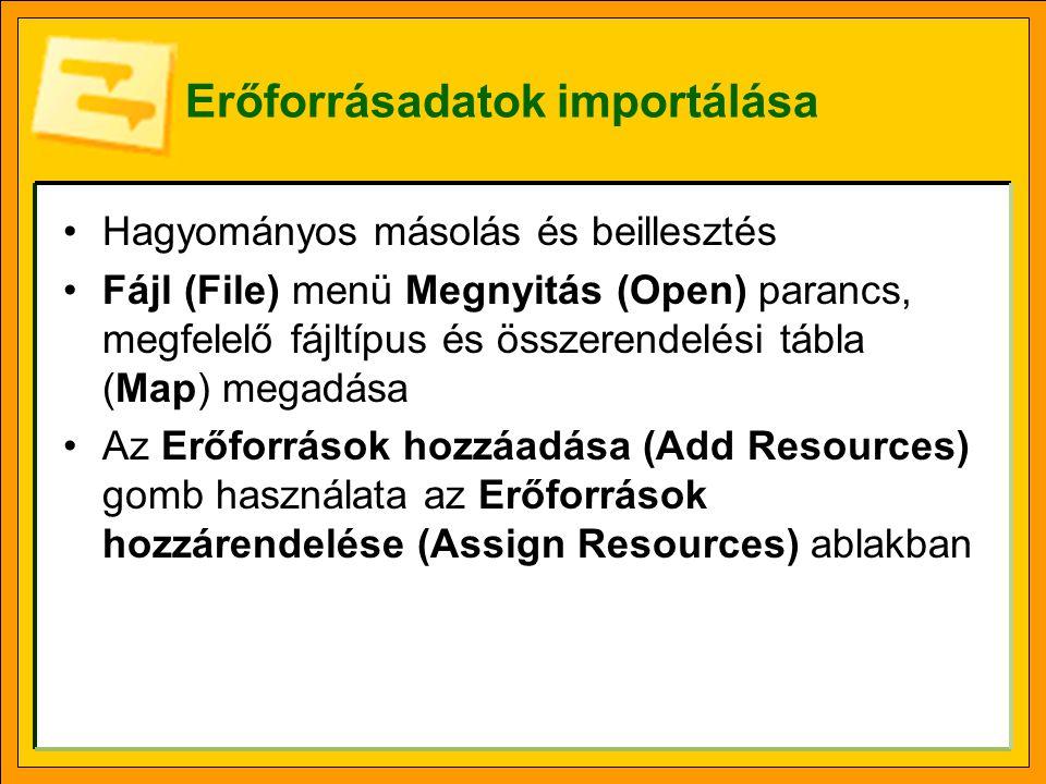 Erőforrásadatok importálása Hagyományos másolás és beillesztés Fájl (File) menü Megnyitás (Open) parancs, megfelelő fájltípus és összerendelési tábla
