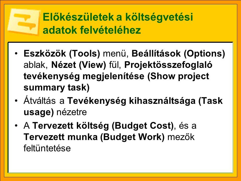 Előkészületek a költségvetési adatok felvételéhez Eszközök (Tools) menü, Beállítások (Options) ablak, Nézet (View) fül, Projektösszefoglaló tevékenység megjelenítése (Show project summary task) Átváltás a Tevékenység kihasználtsága (Task usage) nézetre A Tervezett költség (Budget Cost), és a Tervezett munka (Budget Work) mezők feltüntetése