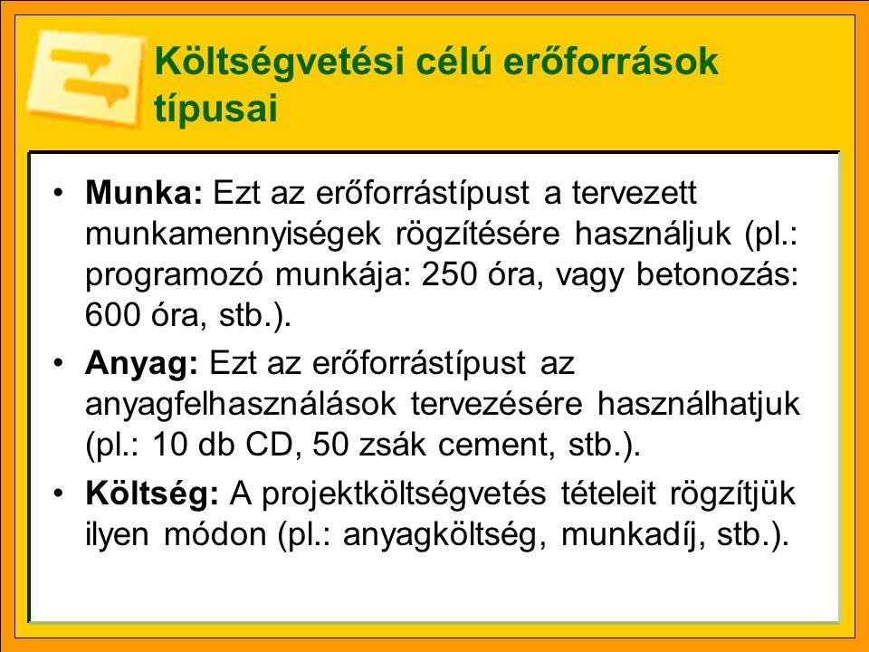 Költségvetési célú erőforrások típusai Munka: Ezt az erőforrástípust a tervezett munkamennyiségek rögzítésére használjuk (pl.: programozó munkája: 250
