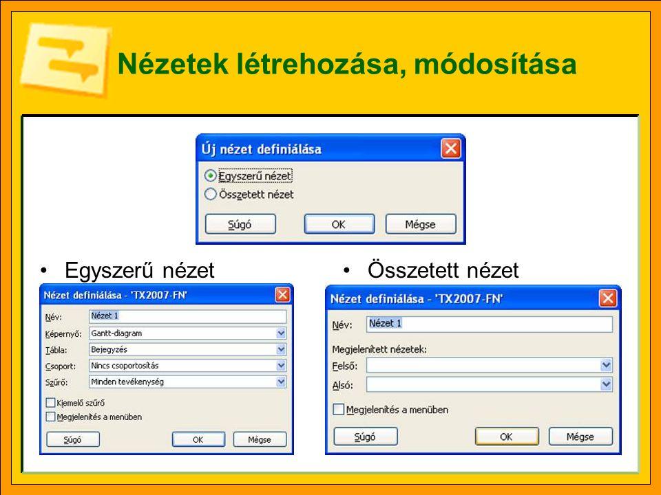 Nézetek a webes felületen Kiszolgáló beállításaihoz (Server Settings) kapcsolódó lap Megjelenés és működés (Look and Feel) szakasz.