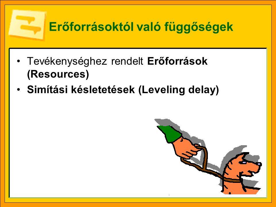 Erőforrásoktól való függőségek Tevékenységhez rendelt Erőforrások (Resources) Simítási késletetések (Leveling delay)