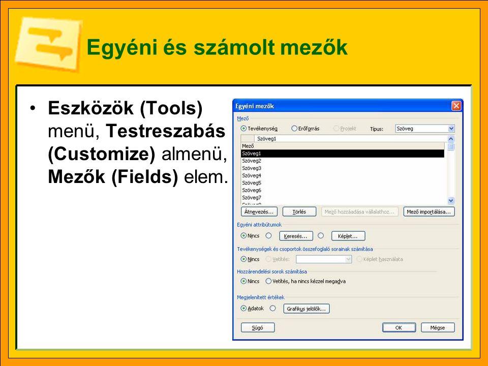 Egyéni és számolt mezők Eszközök (Tools) menü, Testreszabás (Customize) almenü, Mezők (Fields) elem.