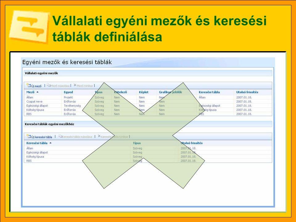 Vállalati egyéni mezők és keresési táblák definiálása