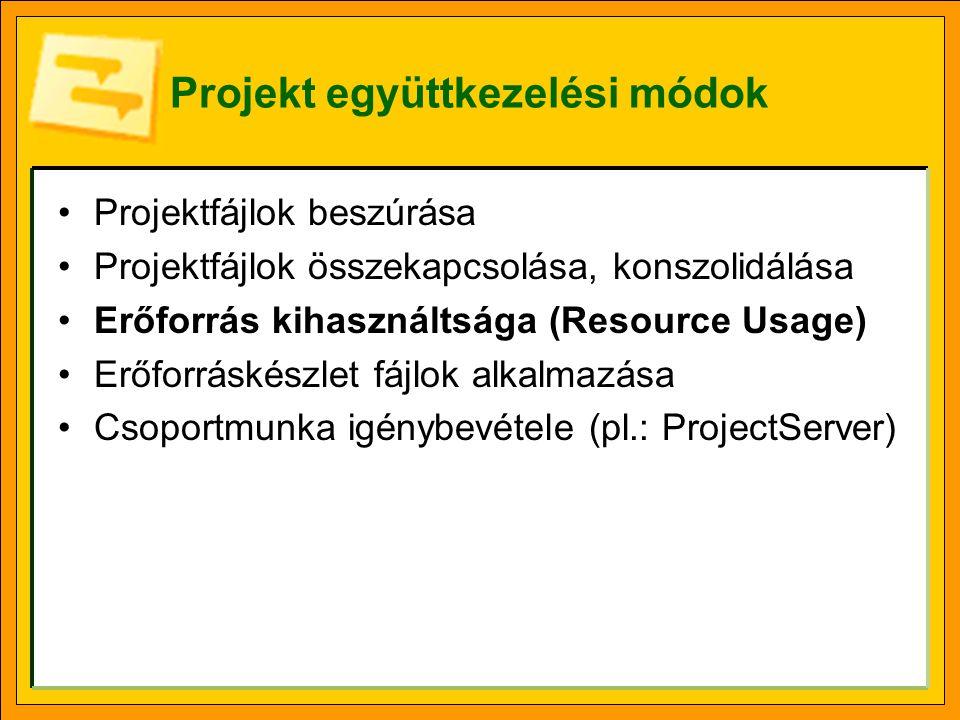 Projektek beszúrása Beszúrás (Insert) menü, Projekt (Project) funkció.