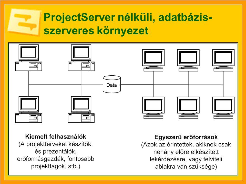 ProjectServer nélküli, adatbázis- szerveres környezet