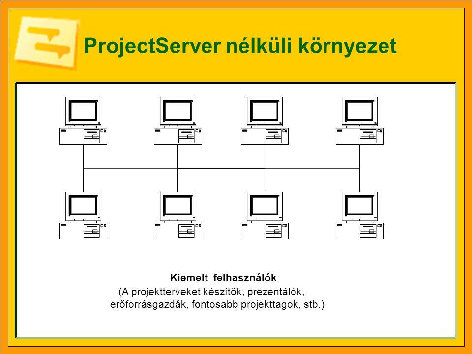 ProjectServer nélküli környezet Kiemelt felhasználók (A projektterveket készítők, prezentálók, erőforrásgazdák, fontosabb projekttagok, stb.)