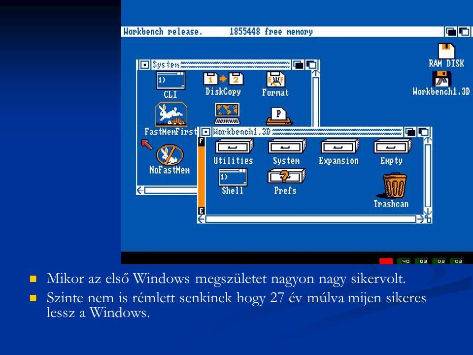 Mikor az első Windows megszületet nagyon nagy sikervolt. Szinte nem is rémlett senkinek hogy 27 év múlva mijen sikeres lessz a Windows.