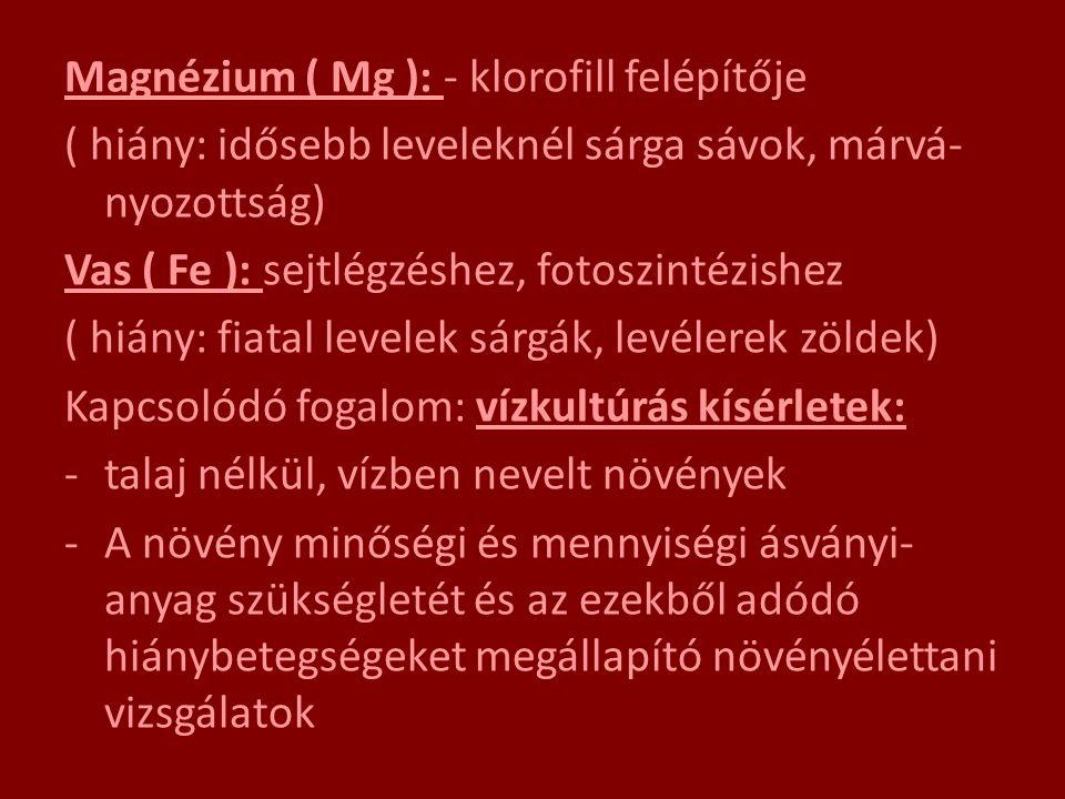 Magnézium ( Mg ): - klorofill felépítője ( hiány: idősebb leveleknél sárga sávok, márvá- nyozottság) Vas ( Fe ): sejtlégzéshez, fotoszintézishez ( hiá