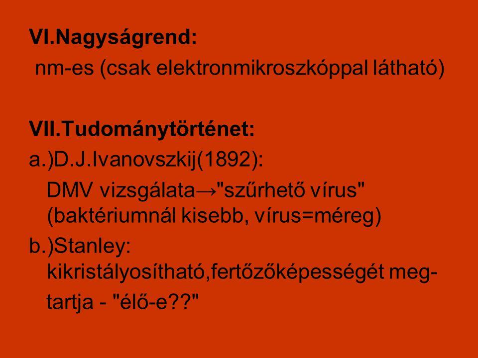 VI.Nagyságrend: nm-es (csak elektronmikroszkóppal látható) VII.Tudománytörténet: a.)D.J.Ivanovszkij(1892): DMV vizsgálata→