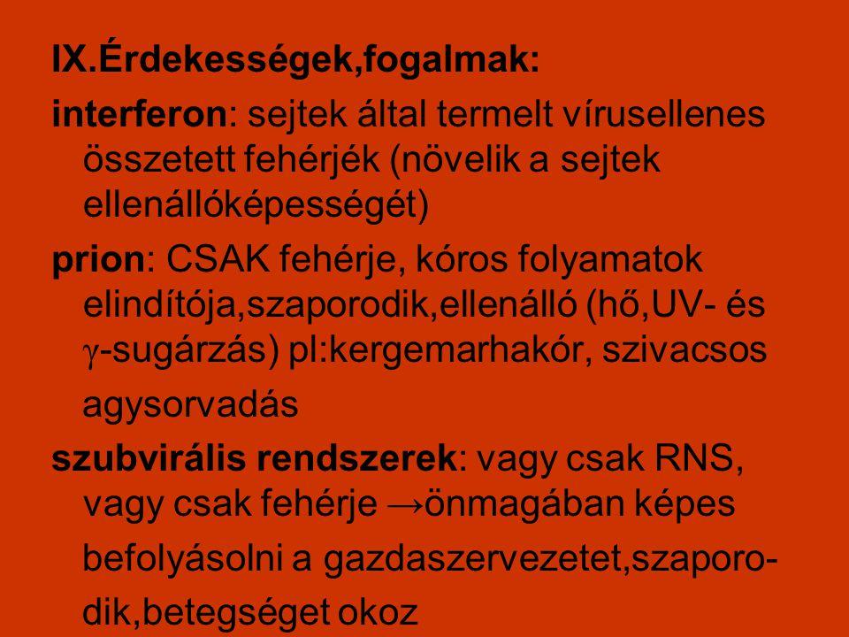 IX.Érdekességek,fogalmak: interferon: sejtek által termelt vírusellenes összetett fehérjék (növelik a sejtek ellenállóképességét) prion: CSAK fehérje,