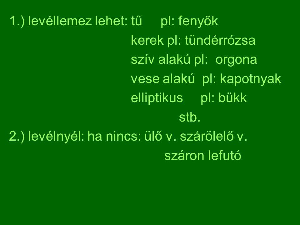 1.) levéllemez lehet: tű pl: fenyők kerek pl: tündérrózsa szív alakú pl: orgona vese alakú pl: kapotnyak elliptikus pl: bükk stb. 2.) levélnyél: ha ni