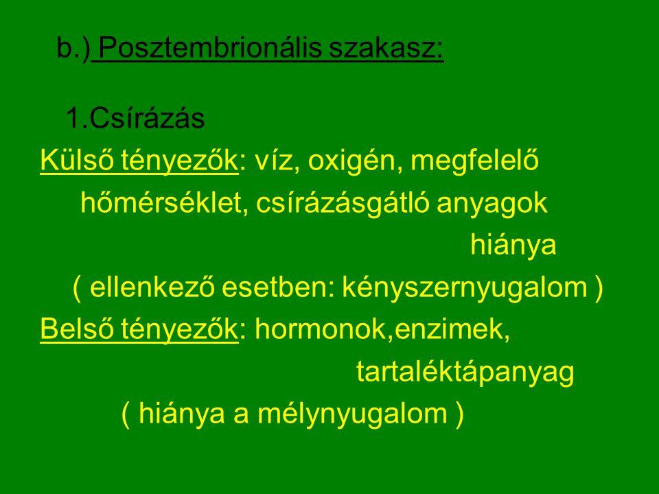 b.) Posztembrionális szakasz: 1.Csírázás Külső tényezők: víz, oxigén, megfelelő hőmérséklet, csírázásgátló anyagok hiánya ( ellenkező esetben: kényszernyugalom ) Belső tényezők: hormonok,enzimek, tartaléktápanyag ( hiánya a mélynyugalom )