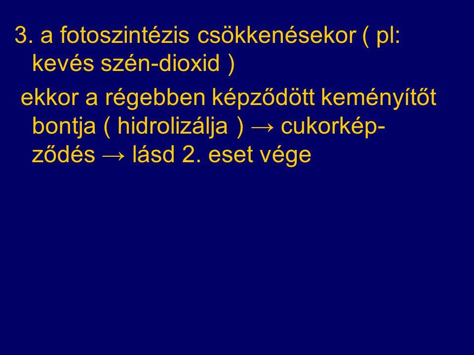 3. a fotoszintézis csökkenésekor ( pl: kevés szén-dioxid ) ekkor a régebben képződött keményítőt bontja ( hidrolizálja ) → cukorkép- ződés → lásd 2. e