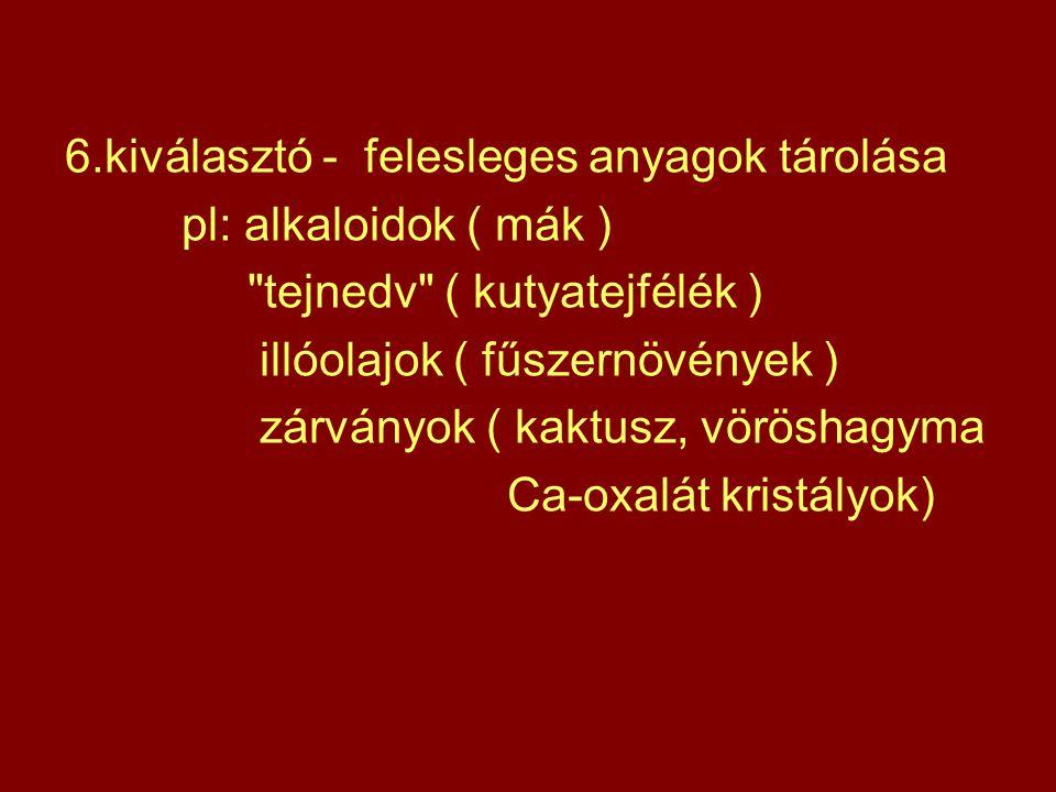 6.kiválasztó - felesleges anyagok tárolása pl: alkaloidok ( mák )