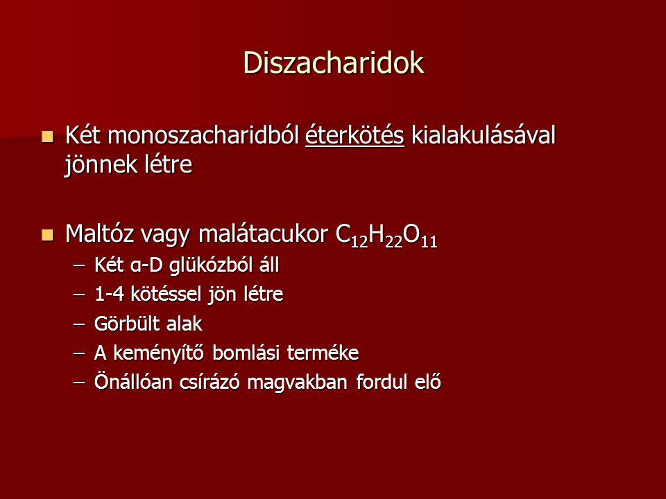 Diszacharidok Két monoszacharidból éterkötés kialakulásával jönnek létre Két monoszacharidból éterkötés kialakulásával jönnek létre Maltóz vagy maláta