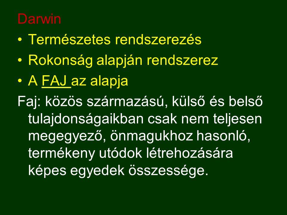 Darwin Természetes rendszerezés Rokonság alapján rendszerez A FAJ az alapja Faj: közös származású, külső és belső tulajdonságaikban csak nem teljesen megegyező, önmagukhoz hasonló, termékeny utódok létrehozására képes egyedek összessége.