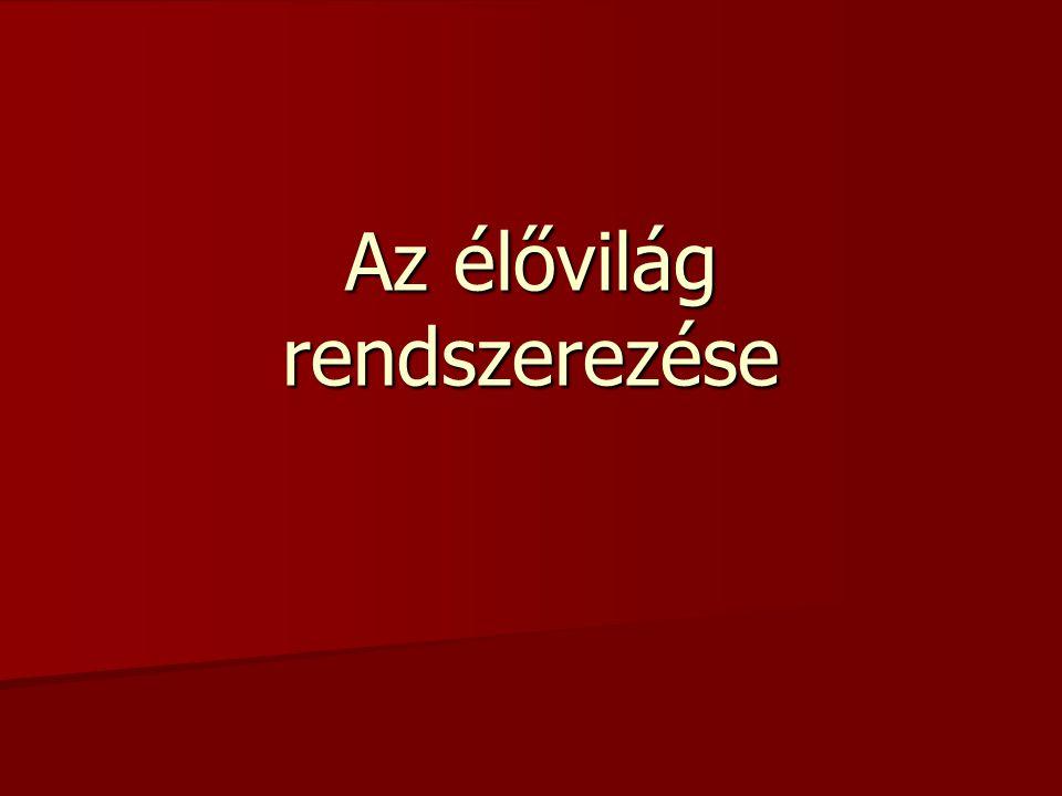 Az első tudományos igényű rendszer megalkotója: Arisztotelész (ie.384-322) Az első tudományos igényű rendszer megalkotója: Arisztotelész (ie.384-322) Karl Linné (1707 – 1778) Karl Linné (1707 – 1778) –1735: Systema naturae –Rendszere mesterséges rendszer: kiragadott, önkényesen választott bélyegek alapján rendszerez (Tk: 29/2.3.