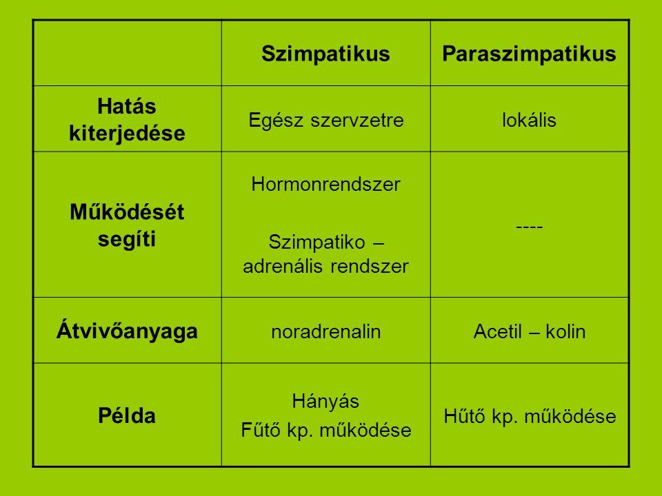 SzimpatikusParaszimpatikus Hatás kiterjedése Egész szervzetrelokális Működését segíti Hormonrendszer Szimpatiko – adrenális rendszer ---- Átvivőanyaga