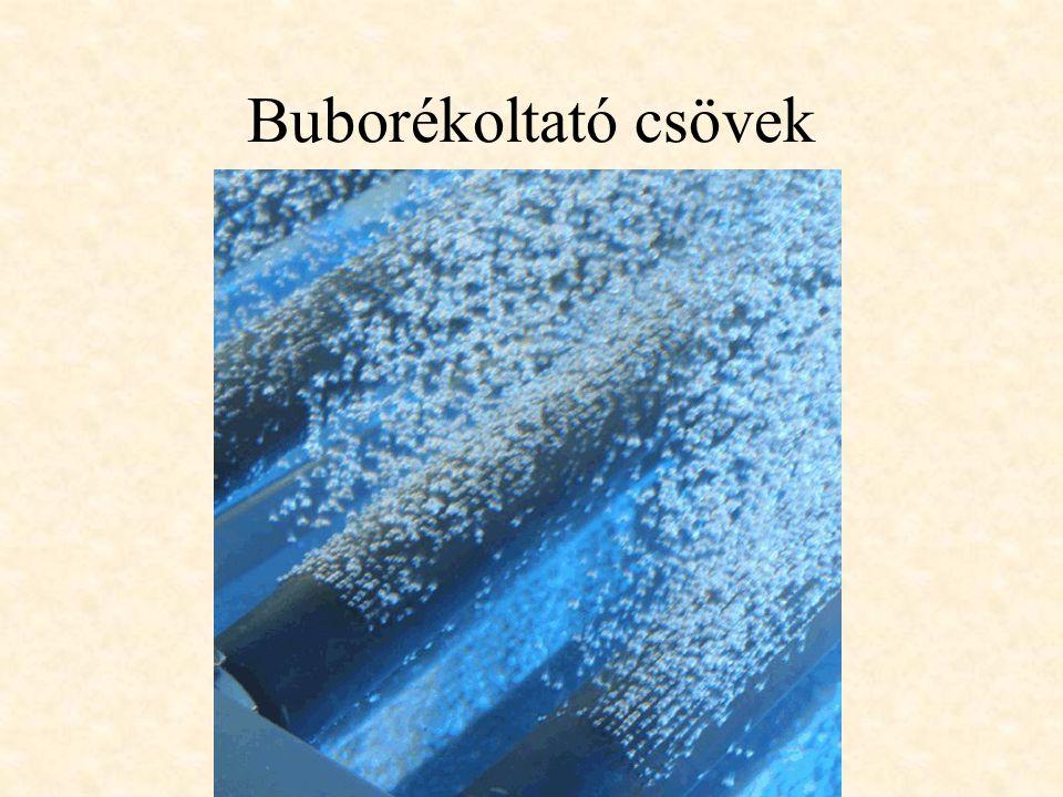Buborékoltató csövek