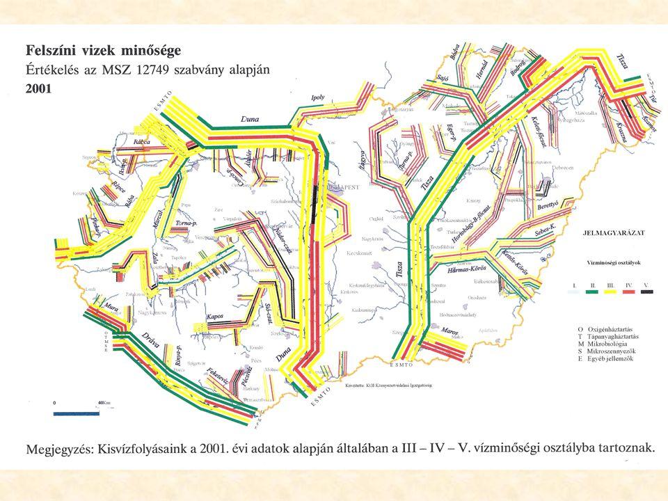 Szennyvíz fajtájaBOI 5 [mgO 2 /l] KOI [mgO 2 /l] Tiszta folyóvíz1-3 Erősen szennyezett folyóvíz 30 Átlagos települési szennyvíz 200-350600 Ipari szennyvízn*1000