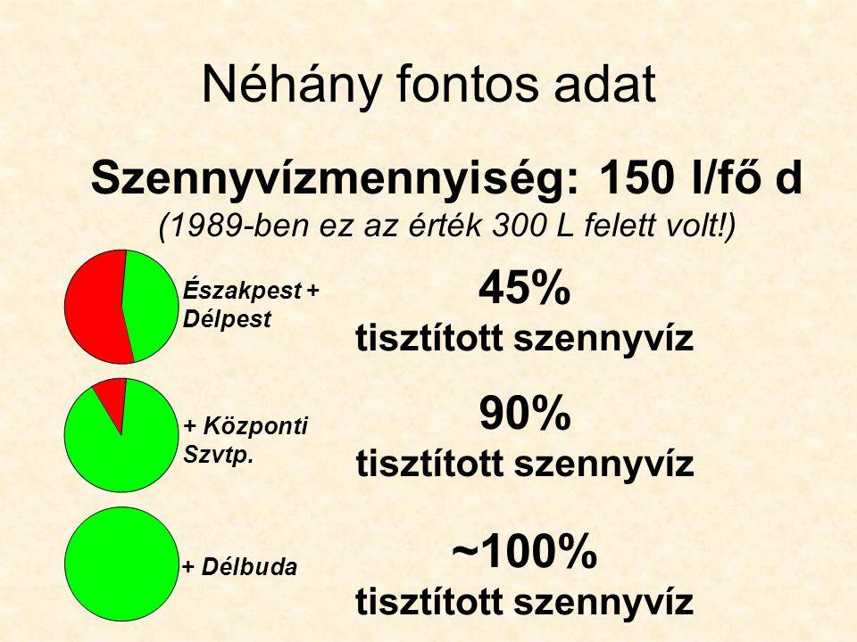 A tisztítótelepek vízgyűjtő területei Duna Ráckevei- Soroksári Dunaág 25 m 3 /s 2500 m 3 /s Vízgyűjtő terület Délpesti Szennyvíztisztító Telep