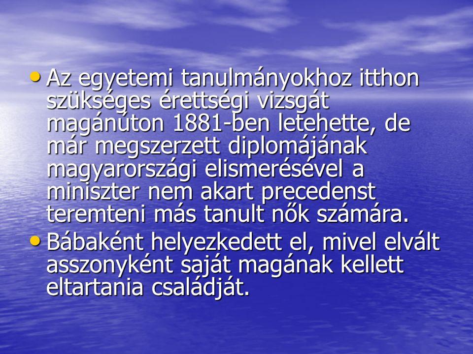 Az egyetemi tanulmányokhoz itthon szükséges érettségi vizsgát magánúton 1881-ben letehette, de már megszerzett diplomájának magyarországi elismeréséve