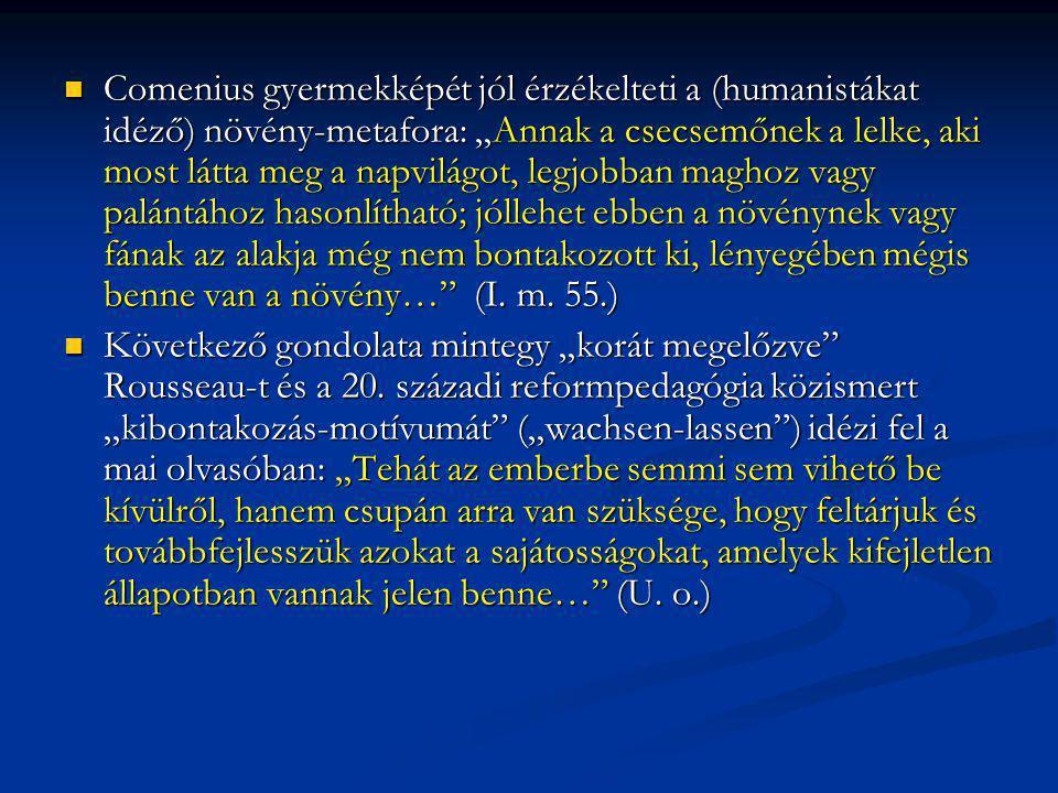 """Comenius gyermekképét jól érzékelteti a (humanistákat idéző) növény-metafora: """"Annak a csecsemőnek a lelke, aki most látta meg a napvilágot, legjobban"""