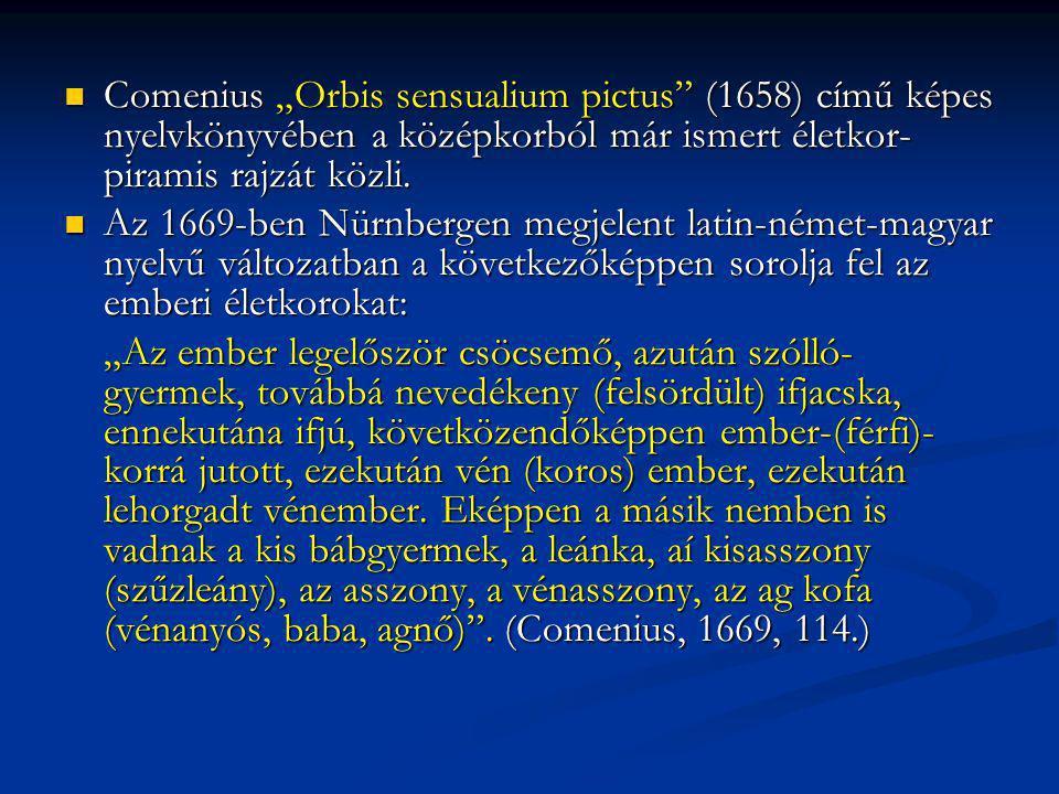 """Comenius """"Orbis sensualium pictus"""" (1658) című képes nyelvkönyvében a középkorból már ismert életkor- piramis rajzát közli. Comenius """"Orbis sensualium"""