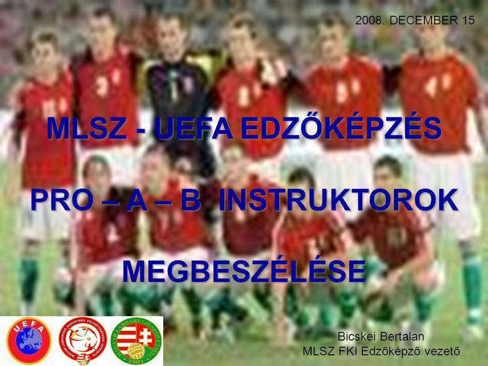 MLSZ - UEFA EDZŐKÉPZÉS PRO – A – B INSTRUKTOROK MEGBESZÉLÉSE MLSZ - UEFA EDZŐKÉPZÉS PRO – A – B INSTRUKTOROK MEGBESZÉLÉSE 2008. DECEMBER 15 Bicskei Be