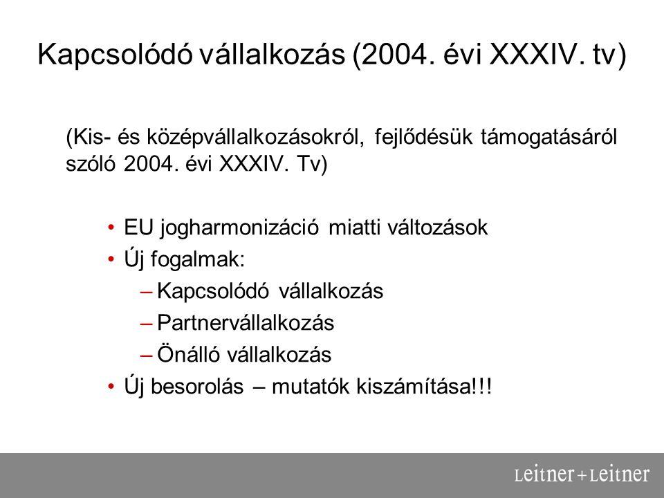 Kapcsolódó vállalkozás (2004. évi XXXIV.