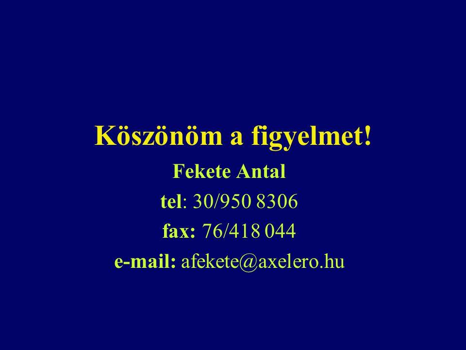 Köszönöm a figyelmet! Fekete Antal tel: 30/950 8306 fax: 76/418 044 e-mail: afekete@axelero.hu