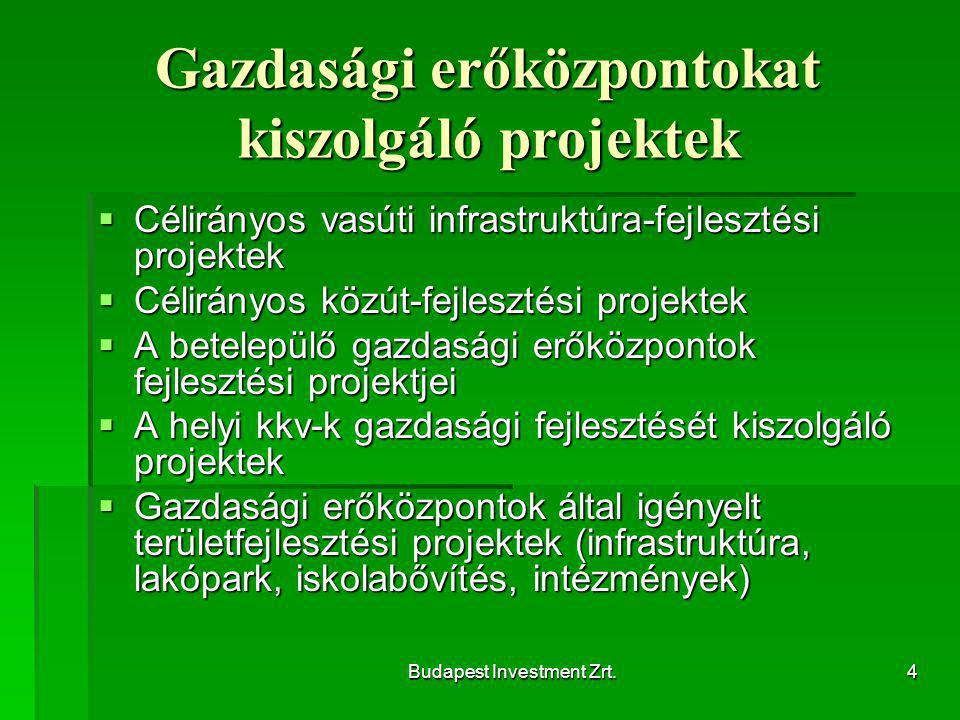 Budapest Investment Zrt.4 Gazdasági erőközpontokat kiszolgáló projektek  Célirányos vasúti infrastruktúra-fejlesztési projektek  Célirányos közút-fejlesztési projektek  A betelepülő gazdasági erőközpontok fejlesztési projektjei  A helyi kkv-k gazdasági fejlesztését kiszolgáló projektek  Gazdasági erőközpontok által igényelt területfejlesztési projektek (infrastruktúra, lakópark, iskolabővítés, intézmények)