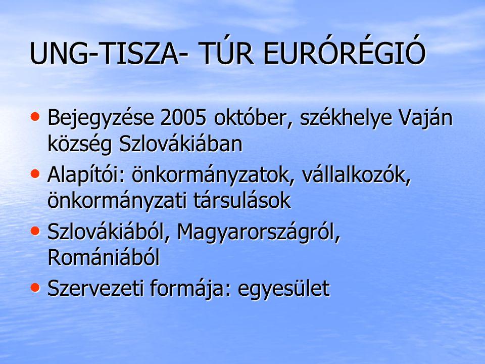 Közös SIKEREINK: Interreg III/ A HUSKUA informatikai fejlesztés, a Tisza - Túr Tudásrégió megteremtése közel 72.000.000 támogatás Interreg III/ A HUSKUA informatikai fejlesztés, a Tisza - Túr Tudásrégió megteremtése közel 72.000.000 támogatás Testvér települési kapcsolatok Testvér települési kapcsolatok Valódi együttműködés Valódi együttműködés