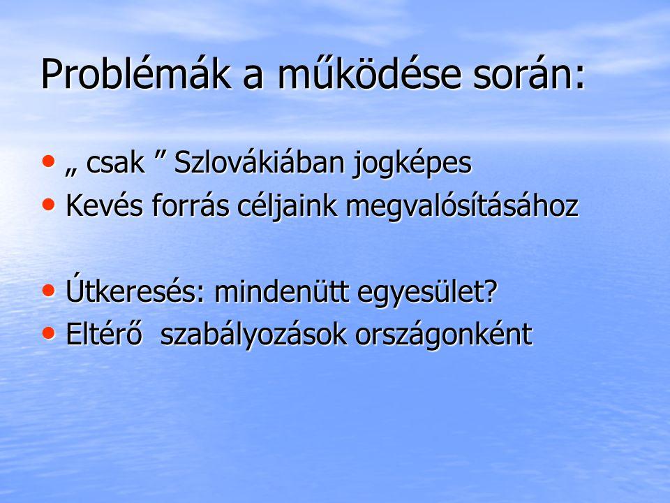 """Problémák a működése során: """" csak Szlovákiában jogképes """" csak Szlovákiában jogképes Kevés forrás céljaink megvalósításához Kevés forrás céljaink megvalósításához Útkeresés: mindenütt egyesület."""