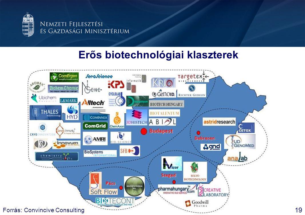Erős biotechnológiai klaszterek 19 Forrás: Convincive Consulting