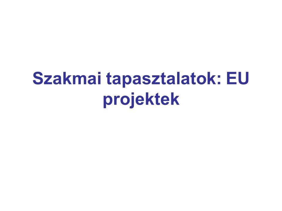 Szakmai tapasztalatok: EU projektek