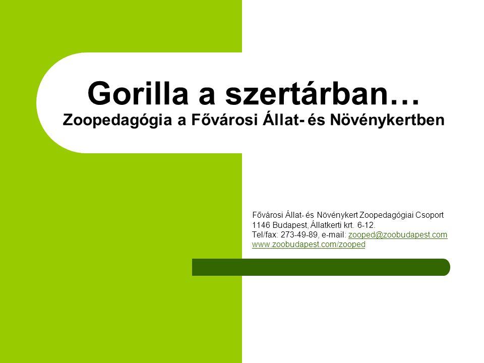 Gorilla a szertárban… Zoopedagógia a Fővárosi Állat- és Növénykertben Fővárosi Állat- és Növénykert Zoopedagógiai Csoport 1146 Budapest, Állatkerti krt.