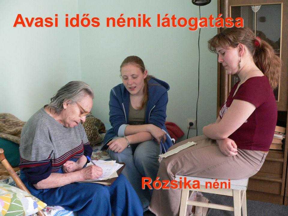 Avasi idős nénik látogatása Rózsika néni