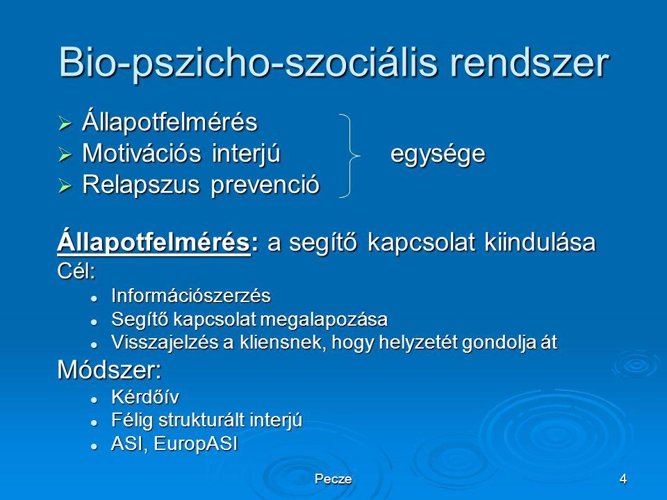 Pecze4 Bio-pszicho-szociális rendszer  Állapotfelmérés  Motivációs interjúegysége  Relapszus prevenció Állapotfelmérés: a segítő kapcsolat kiindulá