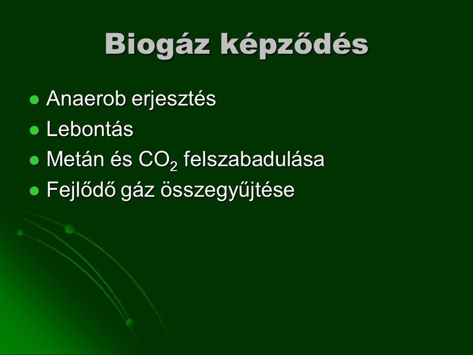 Biogáz képződés Anaerob erjesztés Anaerob erjesztés Lebontás Lebontás Metán és CO 2 felszabadulása Metán és CO 2 felszabadulása Fejlődő gáz összegyűjtése Fejlődő gáz összegyűjtése